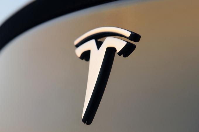 Tesla не виновата в гибели «морского котика»